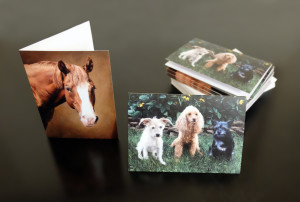 Custom Greeting card from Commissioned Horse and dogs pet portraits oil painting by Seattle artistac Rebecca Luncan.