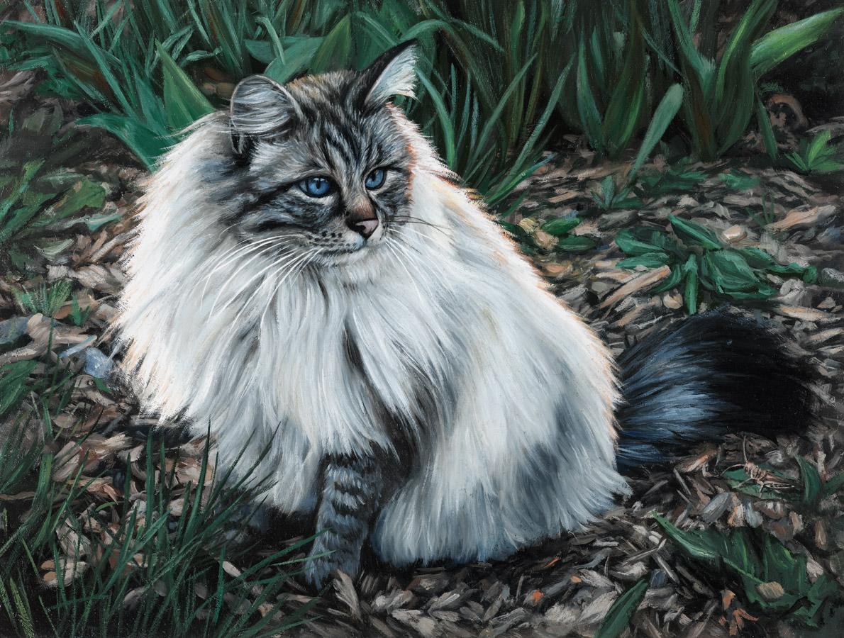 Cat pet Portrait oil painting Rebecca Luncan