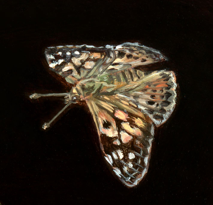 "Detail of Miniature oil painting of painted lady butterfly on copper by Rebecca Luncan, 5"" x 5"""