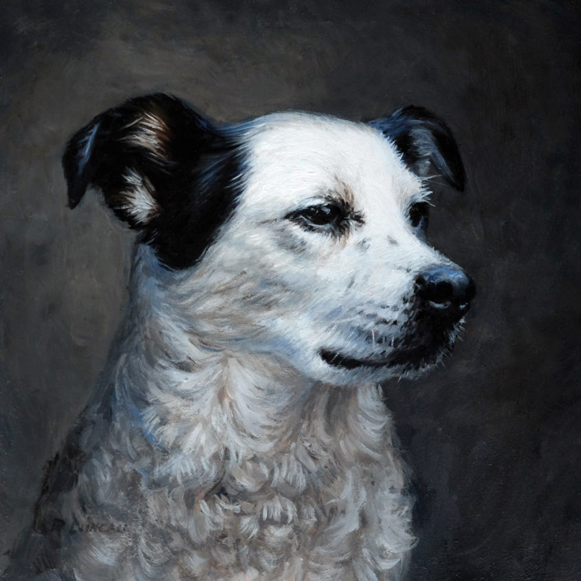 "Woman's best friend, pet portrait dog, oil on copper, 4"" x 4"""