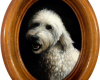 Labradoodle pet portrait oil painting Rebecca Luncan