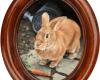 rabbit oil painting peter