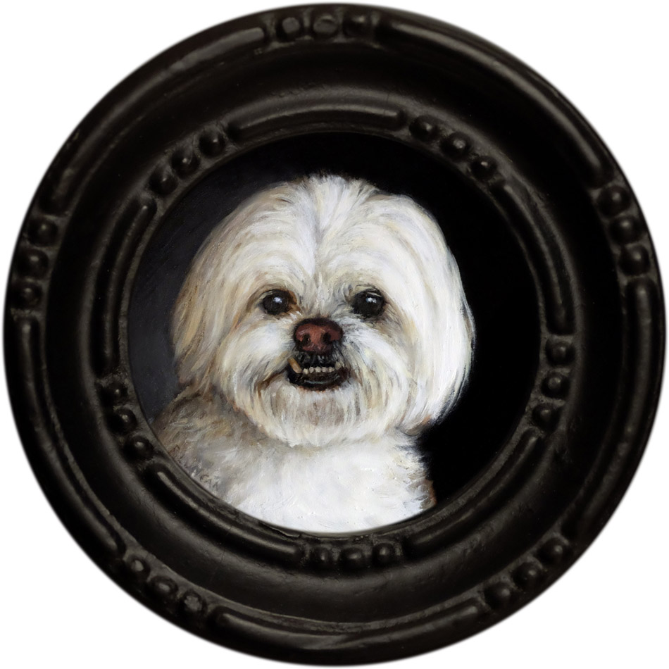 Oliver, pet portrait miniature oil painting by Rebecca Luncan