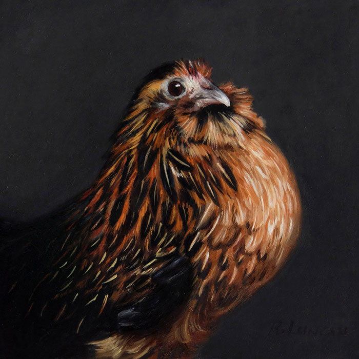 Belgian d'Anver Bantam, oil painting on copper by Rebecca Luncan
