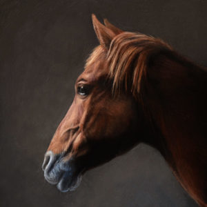 Horse Portrait painting miniature, oil on copper by Rebecca Luncan