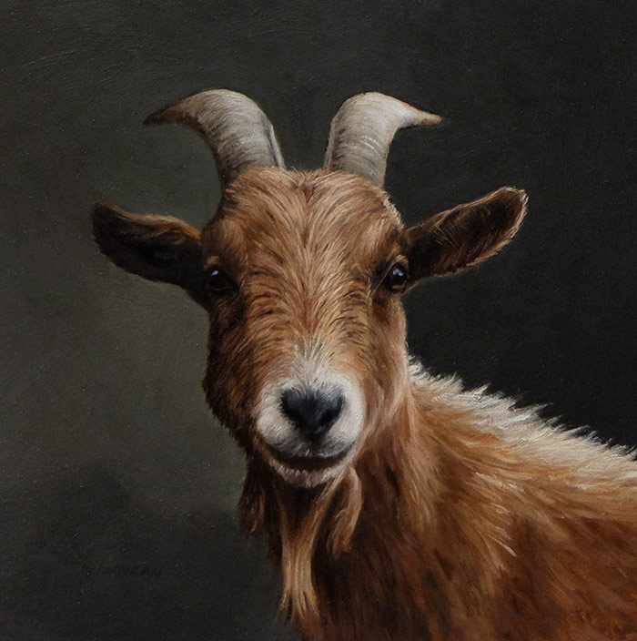 Goat Portrait painting miniature, oil on copper by Rebecca Luncan
