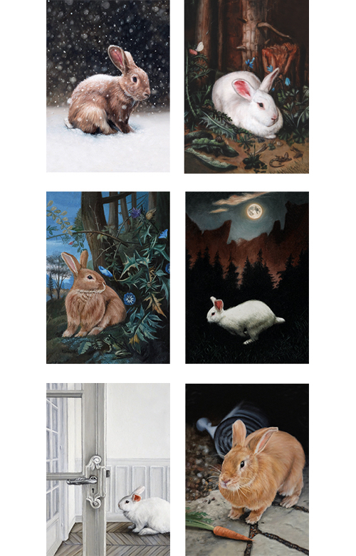 Rabbit adventure greeting card, Set of six