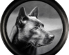 Dog portrait miniature oil painting by Rebecca Luncan