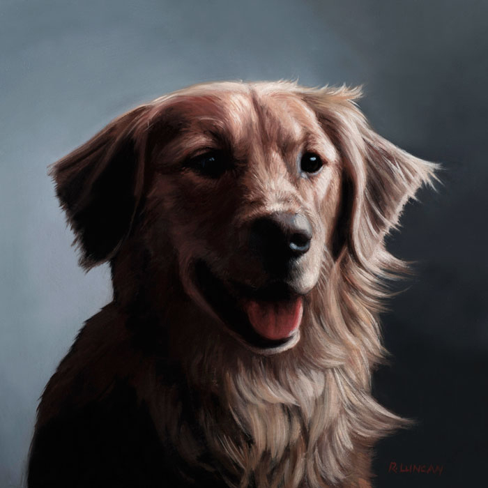 pet portrait oil painting of golden retriever by Rebecca Luncan