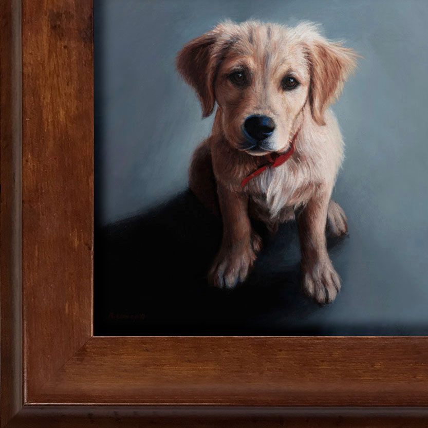 puppy pet portrait oil painting framed by Rebecca Luncan