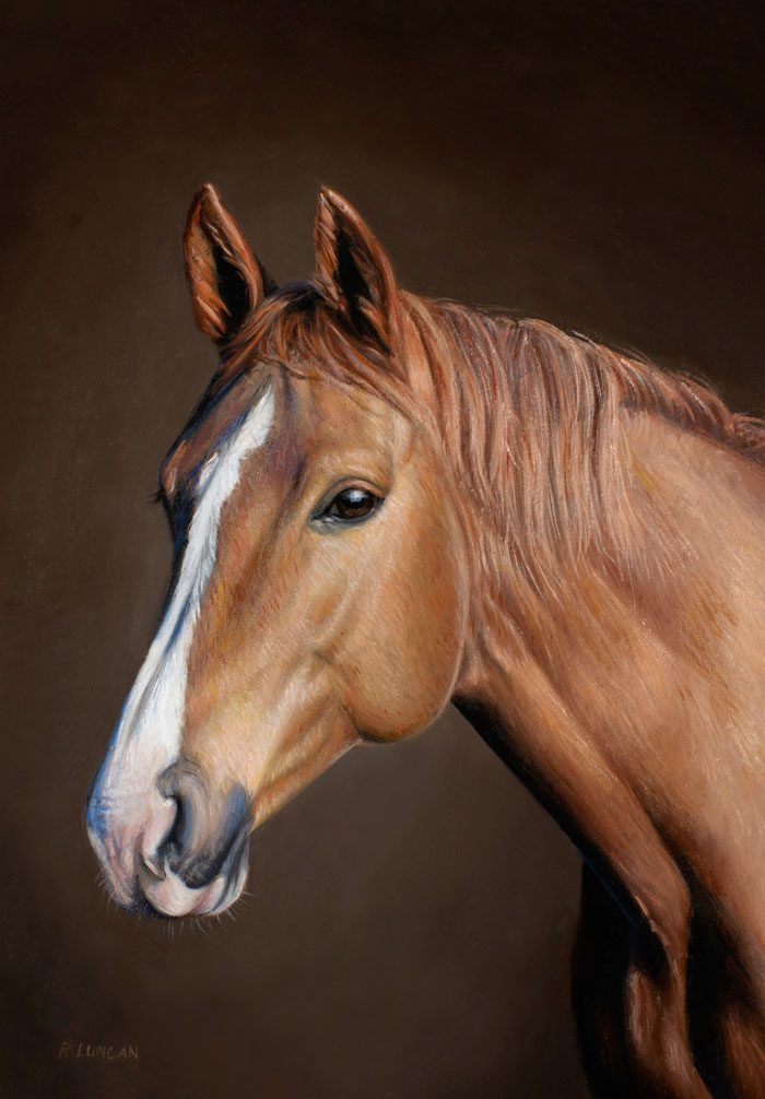 oil Portrait painting of an American Quarter Horse by Rebecca Luncan