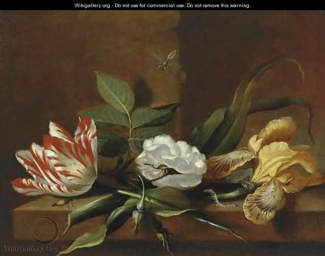 "Jacob Marrel artist known for floral paintings, ""Still Life With A Yellow Iris, A Parrot Tulip, A White Rose And Insects On A Wooden Table Ledge"" oil on Canvas."