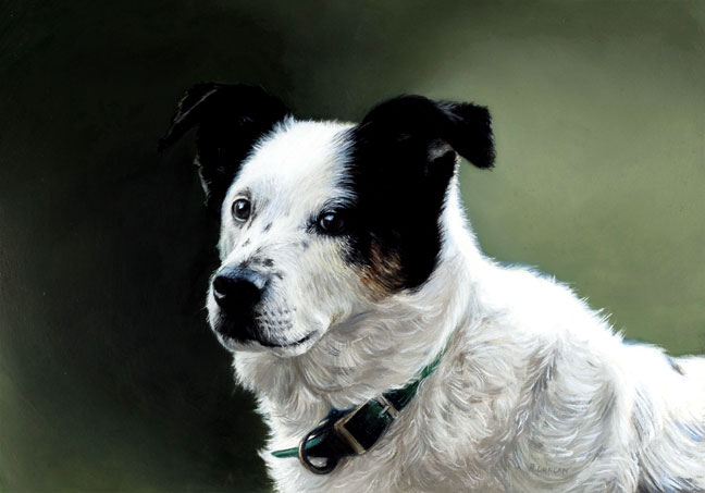 commissioned Pet portrait painting of black and white dog by Rebecca Luncan