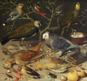 George Flegel, Still Life of Birds and Insects 1637