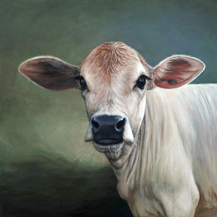 Calf oil painting in the realist tradition by Rebecca Luncan
