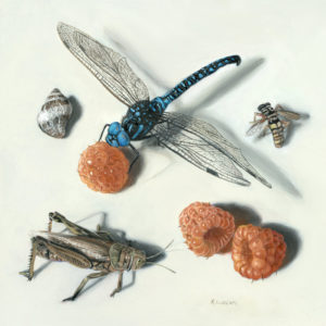 Anita's Insects, miniature oil painting of dragonfly, bee and grasshopper by Rebecca Luncan