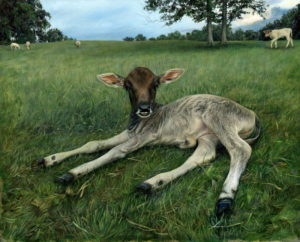 painting of a calf in grassy field in the realist tradition by Rebecca Luncan