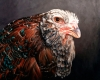 russian orloff chicken oil painting by Rebecca Luncan