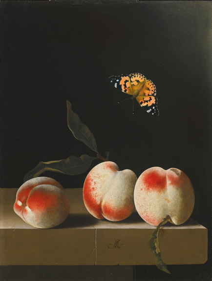 Adriaen Coorte, Three peaches on a stone ledge with a Painted Lady butterfly
