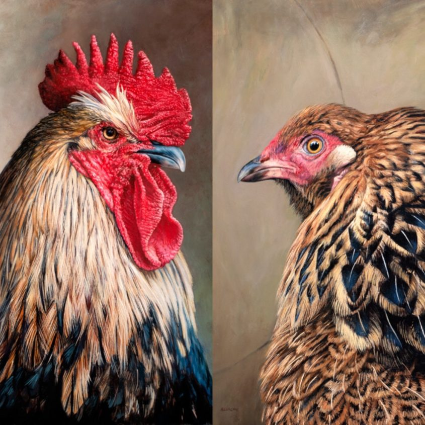chicken paintings by Rebecca Luncan
