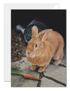 Charlie as Peter rabbit card