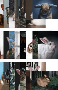 22 different rabbit greeting cards from original paintings by Rebecca Luncan