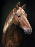Oil painting horse portrait of a rocky mountain horse by Rebecca Luncan