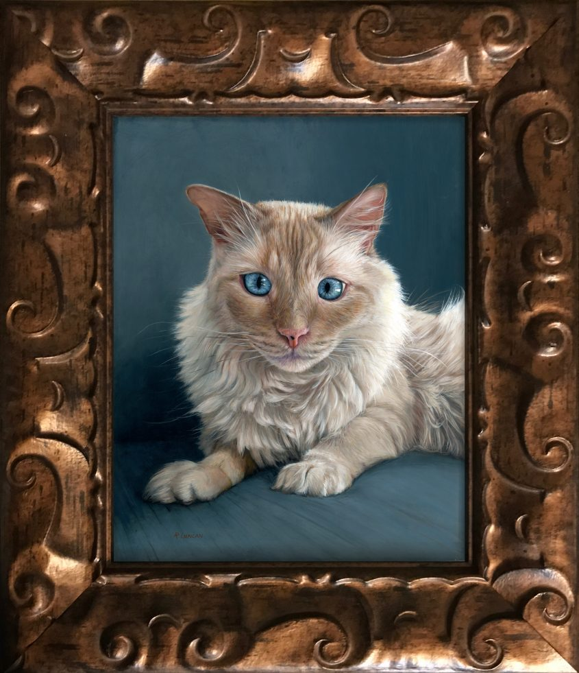 Framed Portrait painting of flame point ragdoll siamese cat by Rebecca Luncan