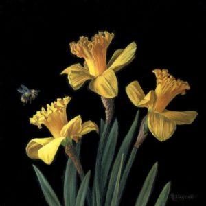 three daffodils with bee still life painting, oil on copper by Rebecca Luncan