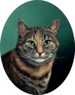Suzie Q cat pet portrait miniature oil painting by Rebecca Luncan